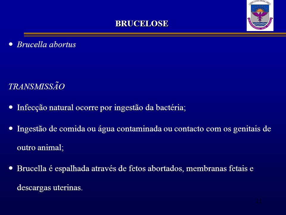 BRUCELOSE Brucella abortus TRANSMISSÃO Infecção natural ocorre por ingestão da bactéria; Ingestão de comida ou água contaminada ou contacto com os gen