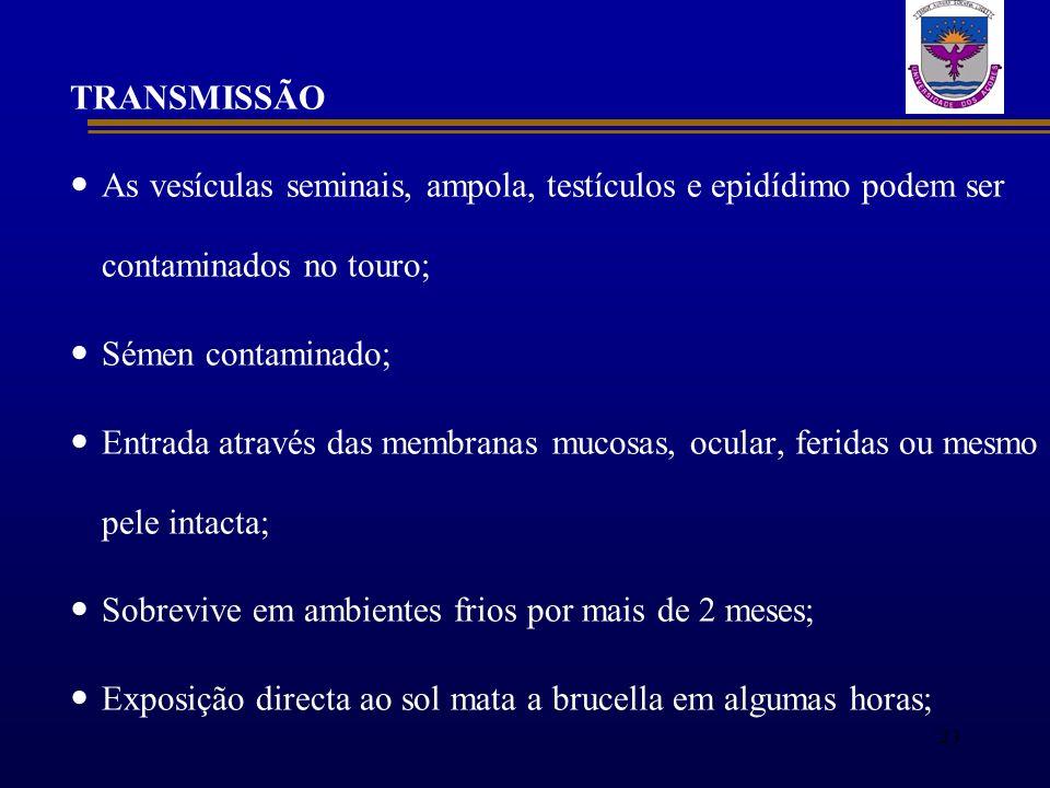 TRANSMISSÃO As vesículas seminais, ampola, testículos e epidídimo podem ser contaminados no touro; Sémen contaminado; Entrada através das membranas mu