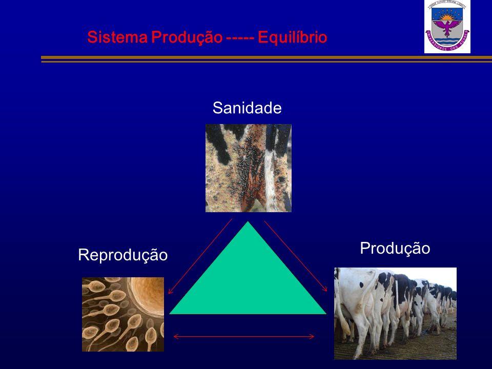 Sistema Produção ----- Equilíbrio Sanidade Produção Reprodução