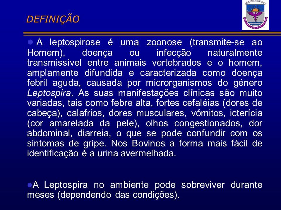 A leptospirose é uma zoonose (transmite-se ao Homem), doença ou infecção naturalmente transmissível entre animais vertebrados e o homem, amplamente di
