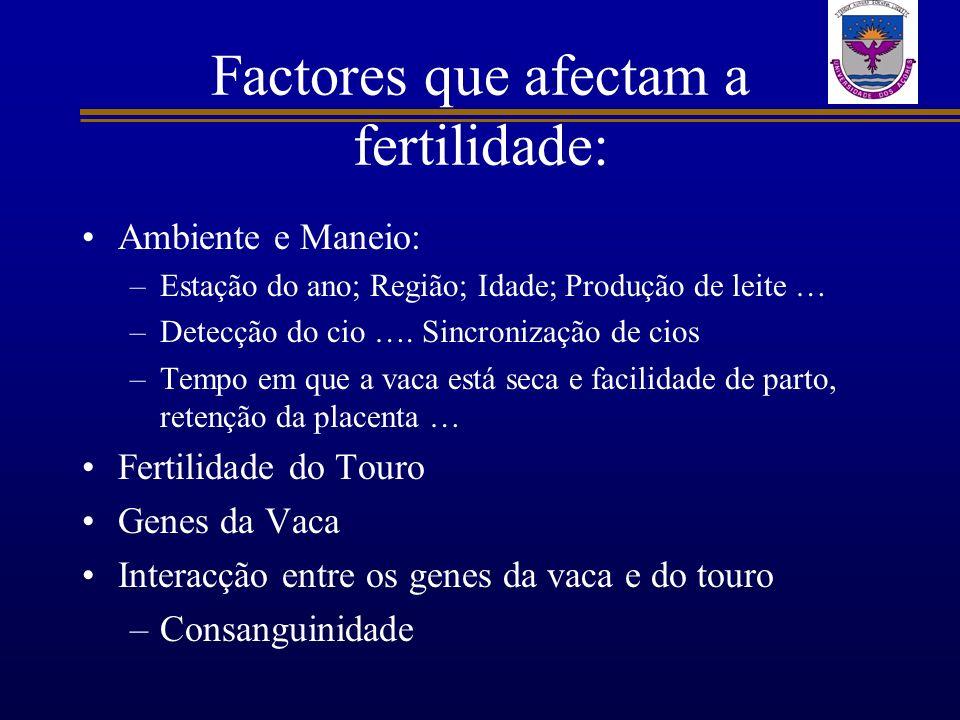 Factores que afectam a fertilidade: Ambiente e Maneio: –Estação do ano; Região; Idade; Produção de leite … –Detecção do cio …. Sincronização de cios –