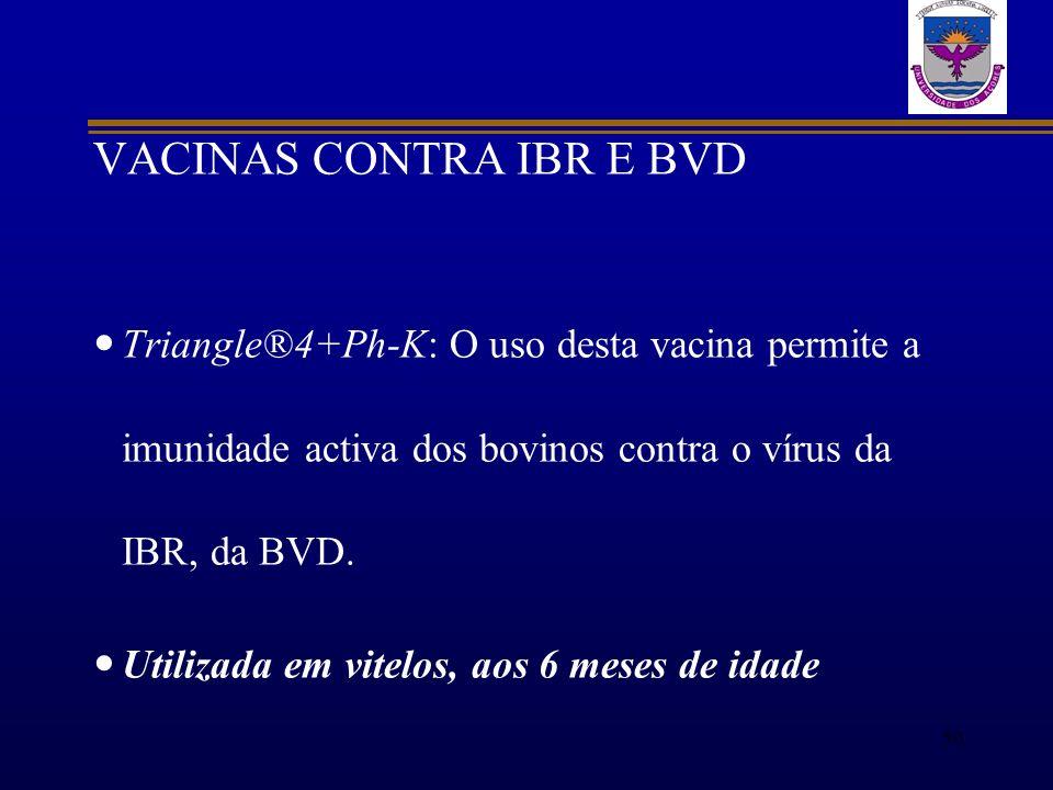 VACINAS CONTRA IBR E BVD Triangle®4+Ph-K: O uso desta vacina permite a imunidade activa dos bovinos contra o vírus da IBR, da BVD. Utilizada em vitelo