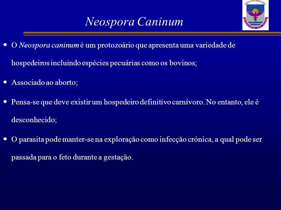 Neospora Caninum O Neospora caninum é um protozoário que apresenta uma variedade de hospedeiros incluindo espécies pecuárias como os bovinos; Associad