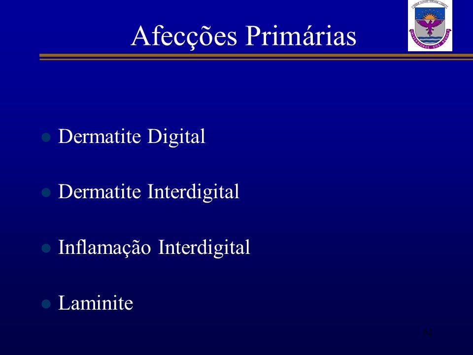 Afecções Primárias Dermatite Digital Dermatite Interdigital Inflamação Interdigital Laminite 62