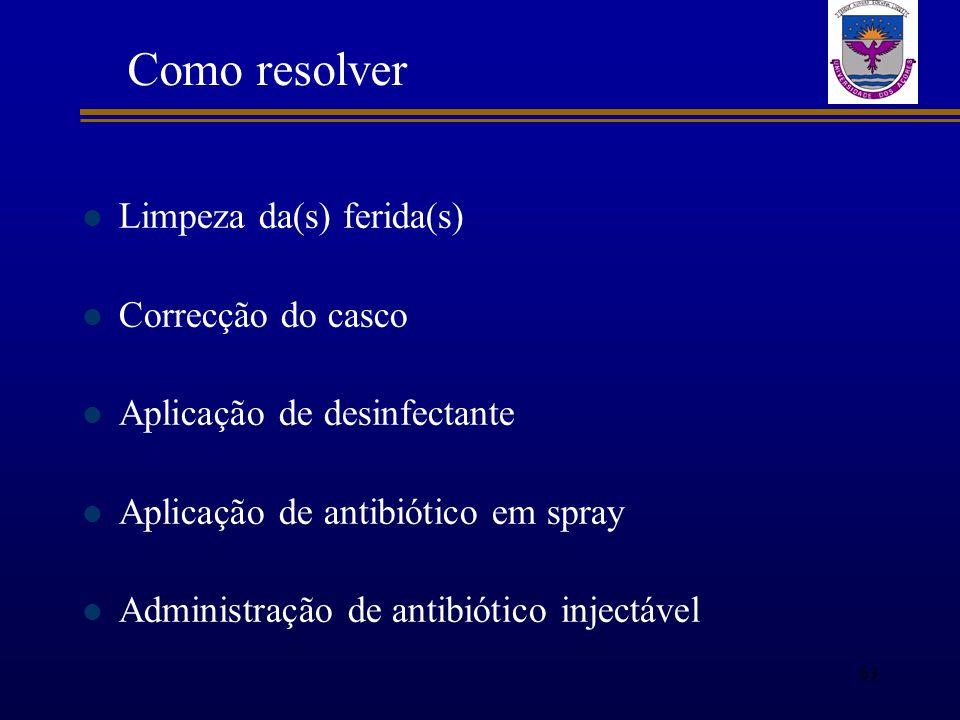Limpeza da(s) ferida(s) Correcção do casco Aplicação de desinfectante Aplicação de antibiótico em spray Administração de antibiótico injectável Como r