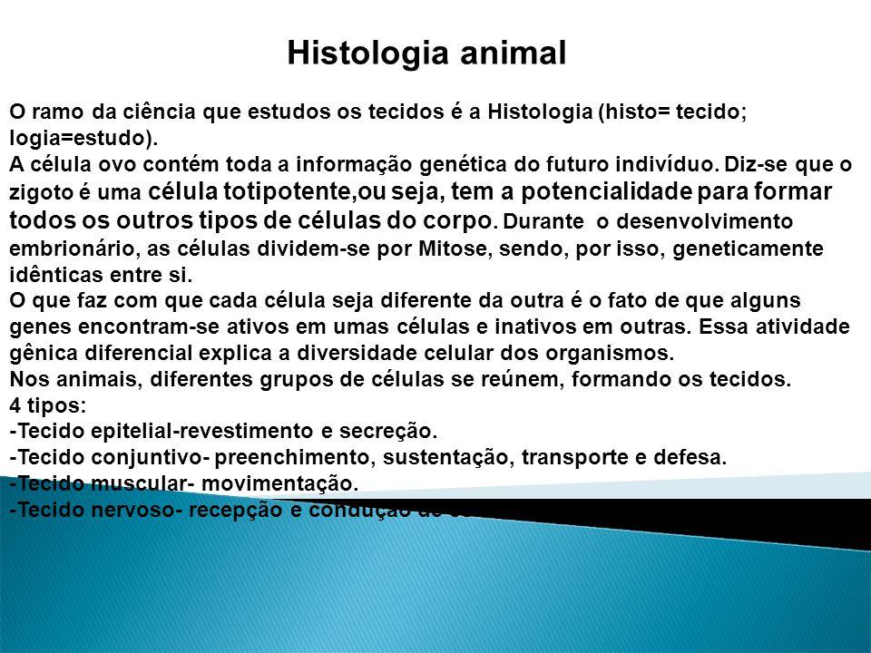 Histologia animal O ramo da ciência que estudos os tecidos é a Histologia (histo= tecido; logia=estudo). A célula ovo contém toda a informação genétic