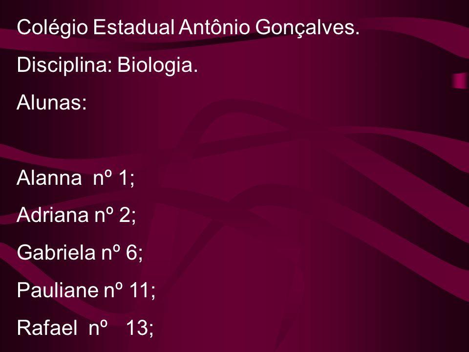 Colégio Estadual Antônio Gonçalves. Disciplina: Biologia. Alunas: Alanna nº 1; Adriana nº 2; Gabriela nº 6; Pauliane nº 11; Rafael nº 13;