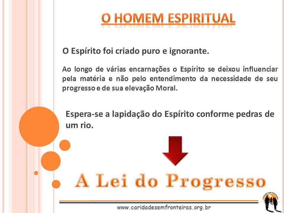 O Espírito foi criado puro e ignorante. www.caridadesemfronteiras.org.br Ao longo de várias encarnações o Espírito se deixou influenciar pela matéria