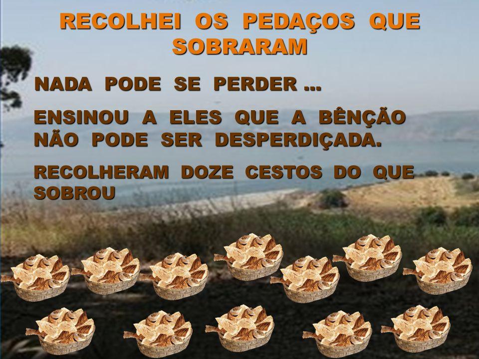 TODOS FORAM ALIMENTADOS