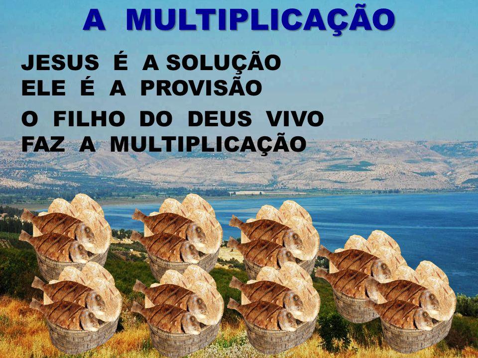 JESUS É A SOLUÇÃO ELE É A PROVISÃO A MULTIPLICAÇÃO O FILHO DO DEUS VIVO FAZ A MULTIPLICAÇÃO