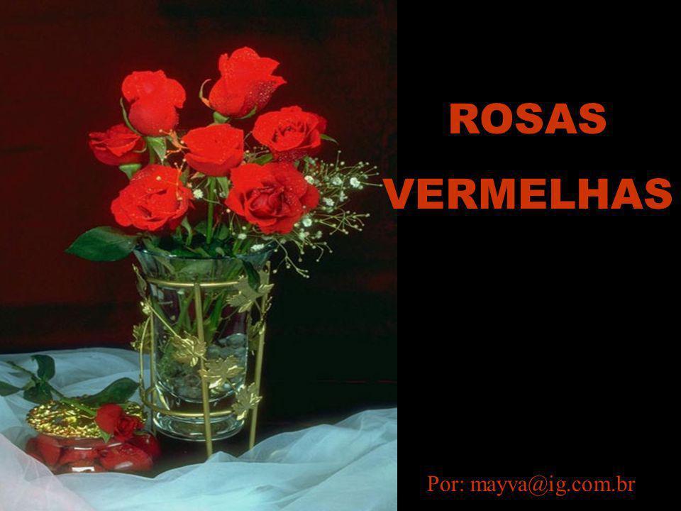 Por: mayva@ig.com.br ROSAS VERMELHAS