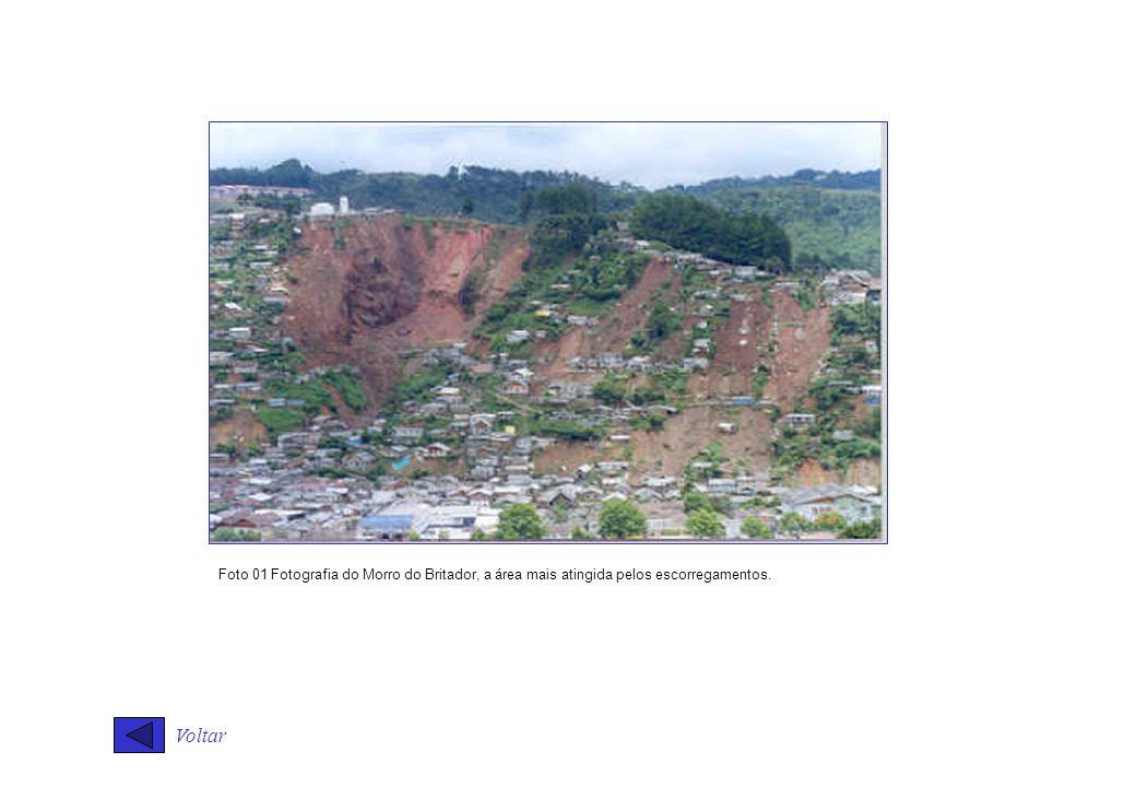 Voltar Foto 01 Fotografia do Morro do Britador, a área mais atingida pelos escorregamentos.