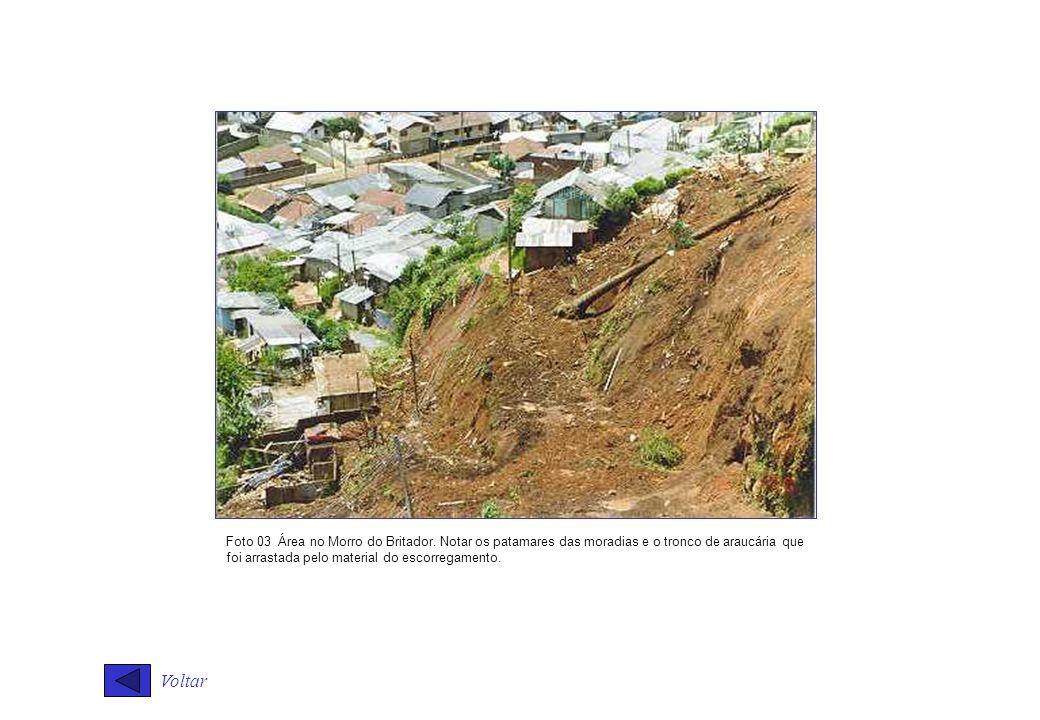Voltar Foto 03 Área no Morro do Britador. Notar os patamares das moradias e o tronco de araucária que foi arrastada pelo material do escorregamento.