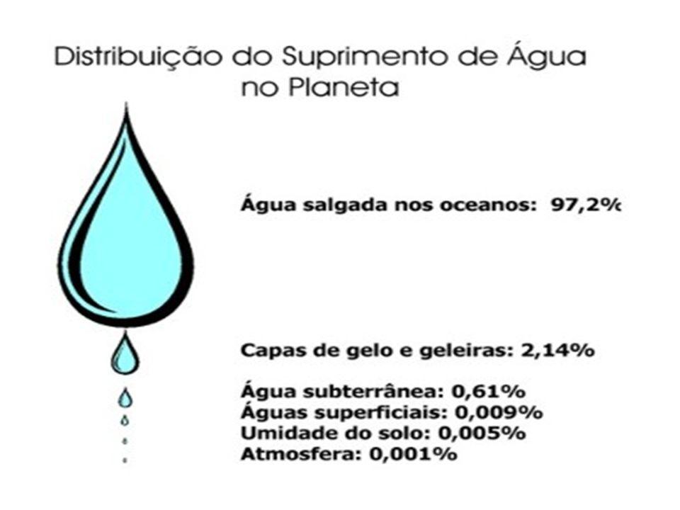 A ÁGUA NO MUNDO A MEDIDA DE CONSUMO DE ÁGUA/HABITANTE/DIA CONSIDERADA IDEAL PARA REGIÕES DE CLIMA TROPICAL É DE DUZENTOS LITROS.