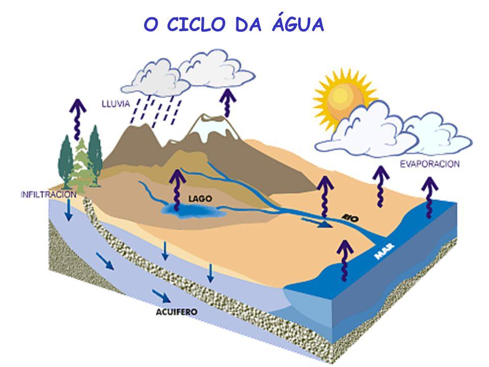 OS DESTINOS DA ÁGUA AS ÁGUAS TÊM 3 DESTINOS DIFERENTES: ÁGUAS ATMOSFÉRICAS águas superficiais, que não escoam e que serão evaporadas (dos rios, charco