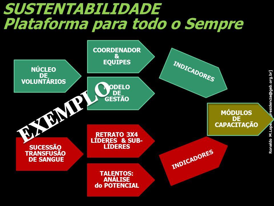 Ronaldo M.Lopes [ presidencia@geb.org.br] SUSTENTABILIDADE Plataforma para todo o Sempre NÚCLEO DE VOLUNTÁRIOS SUCESSÃO TRANSFUSÃO DE SANGUE NOSSO FUT