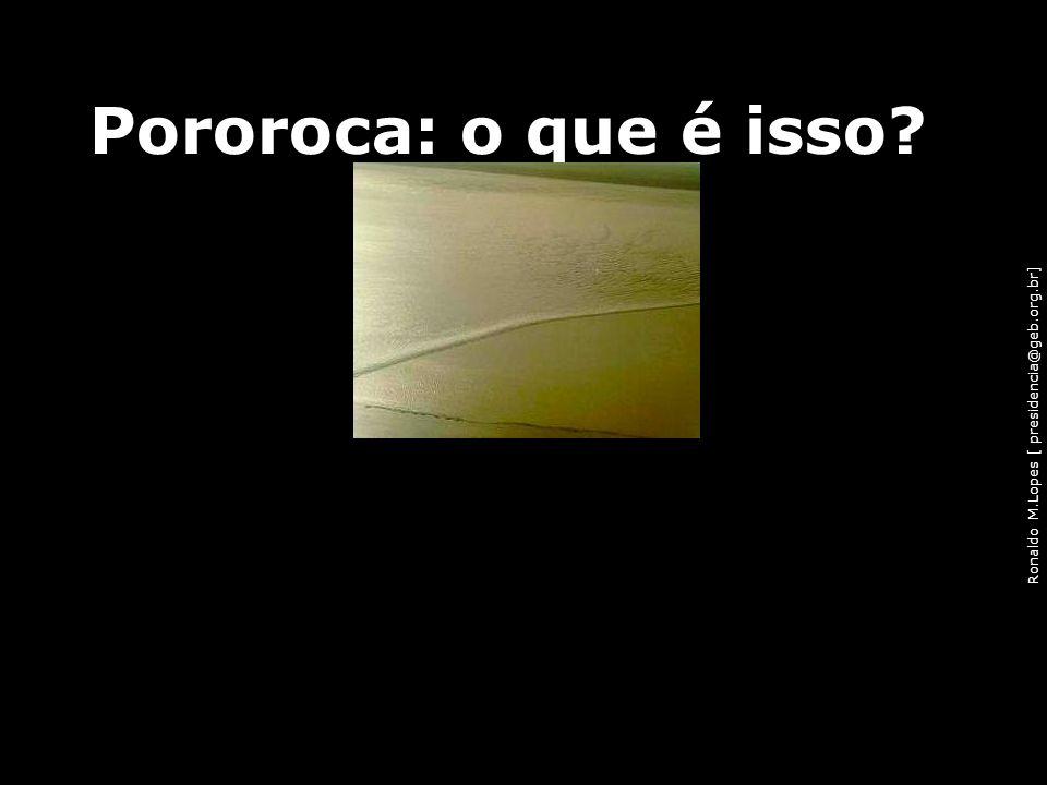 Ronaldo M.Lopes [ presidencia@geb.org.br] Pororoca: o que é isso? 94