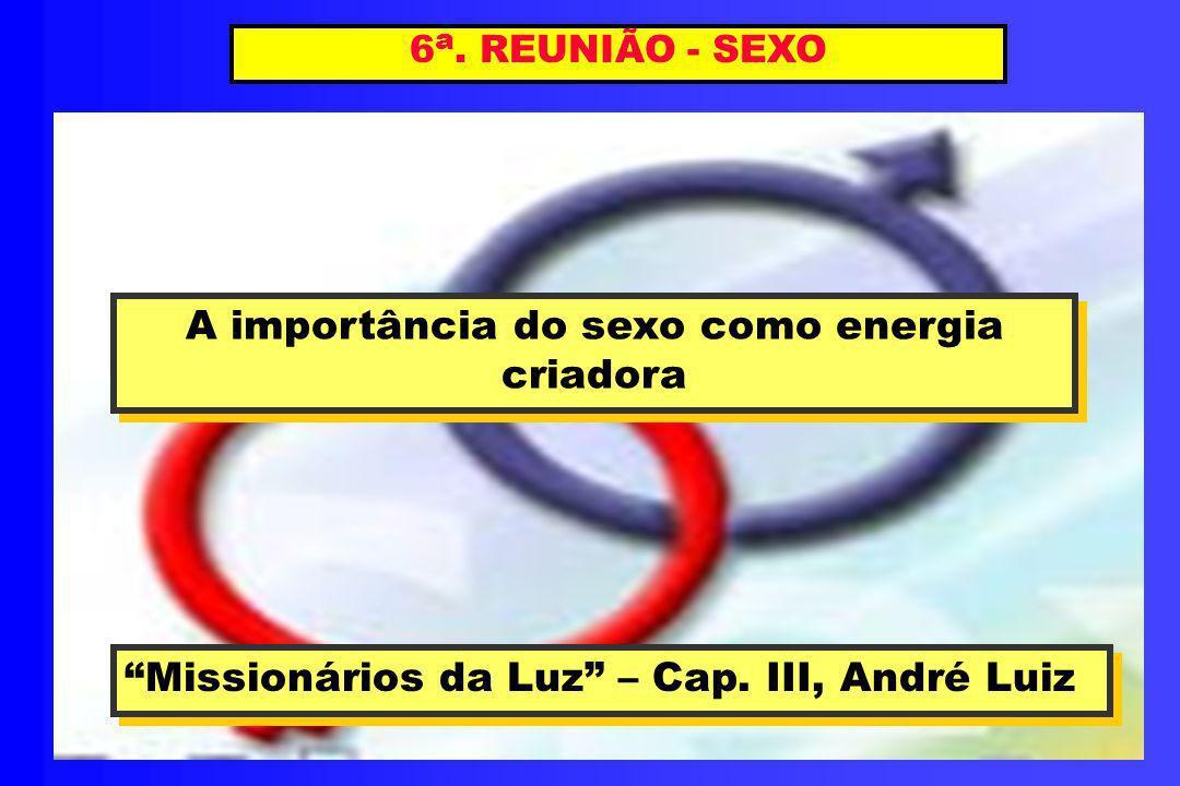 6 a. REUNIÃO - SEXO A importância do sexo como energia criadora A importância do sexo como energia criadora Missionários da Luz – Cap. III, André Luiz