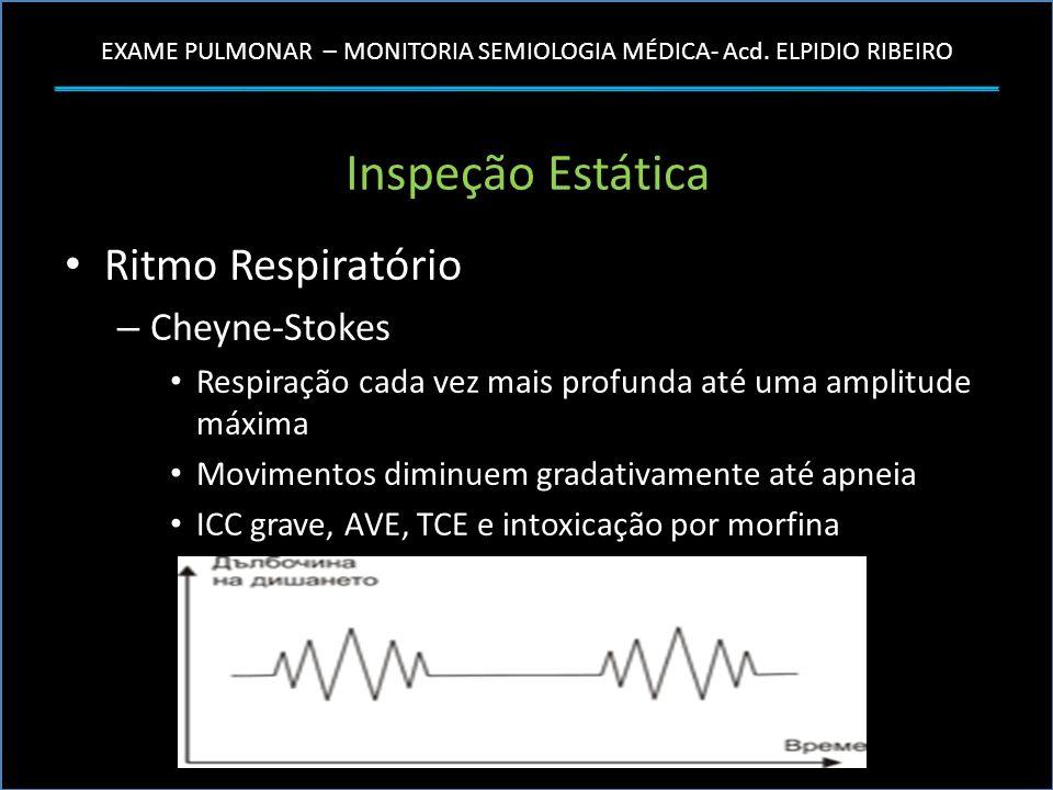 EXAME PULMONAR – MONITORIA SEMIOLOGIA MÉDICA- Acd. ELPIDIO RIBEIRO Inspeção Estática Ritmo Respiratório – Cheyne-Stokes Respiração cada vez mais profu