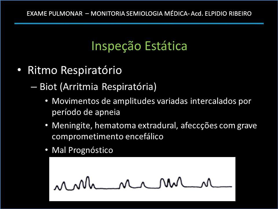 EXAME PULMONAR – MONITORIA SEMIOLOGIA MÉDICA- Acd. ELPIDIO RIBEIRO Inspeção Estática Ritmo Respiratório – Biot (Arritmia Respiratória) Movimentos de a