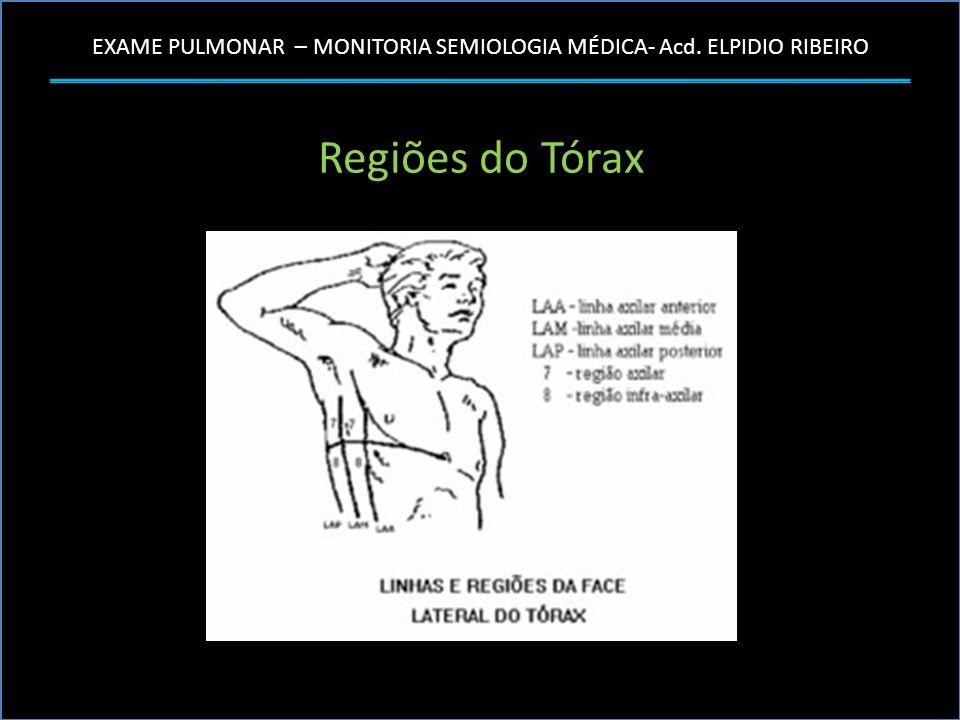 EXAME PULMONAR – MONITORIA SEMIOLOGIA MÉDICA- Acd. ELPIDIO RIBEIRO Regiões do Tórax