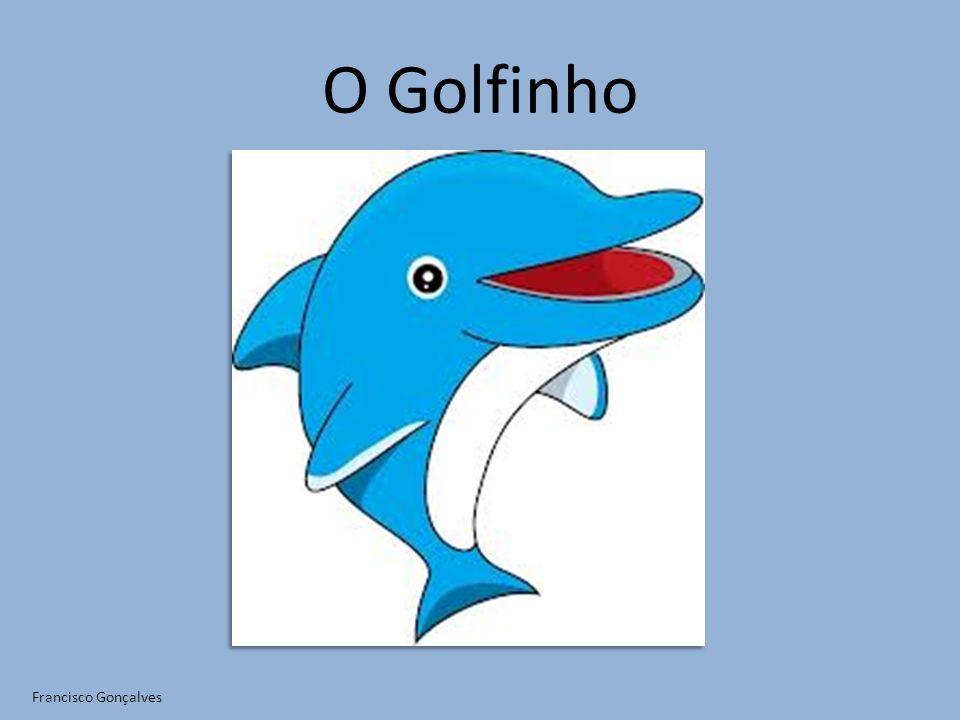 O Golfinho Francisco Gonçalves