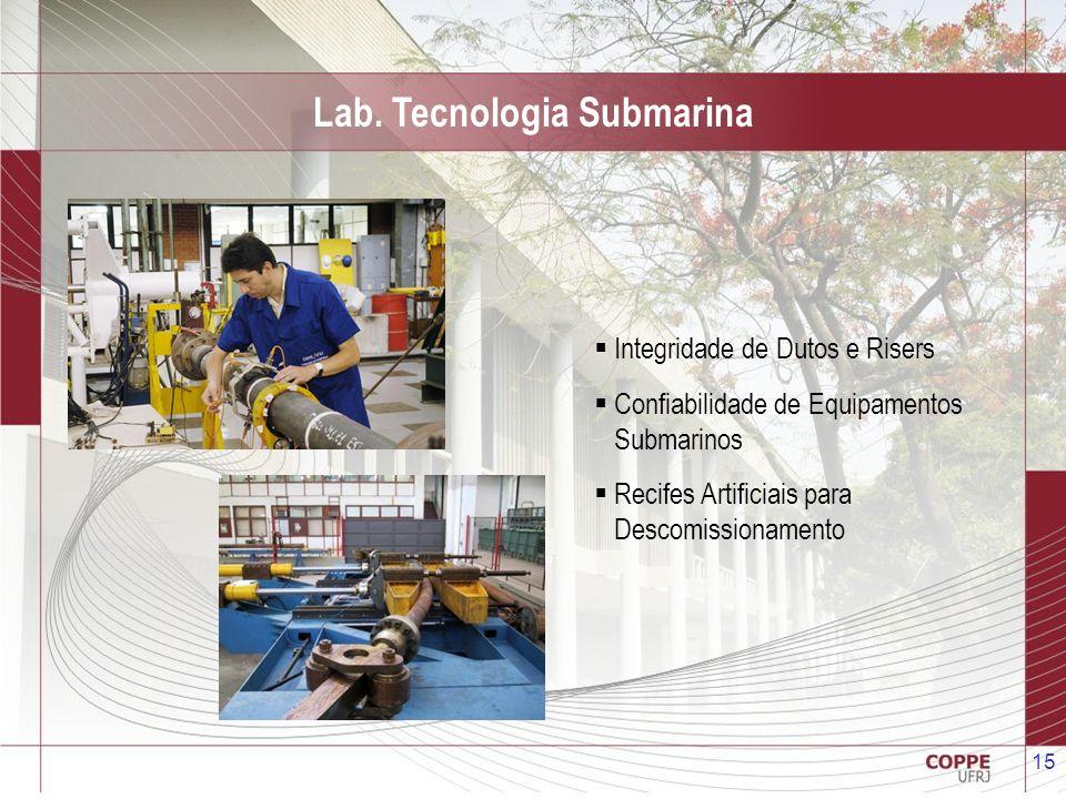 15 Lab. Tecnologia Submarina Integridade de Dutos e Risers Confiabilidade de Equipamentos Submarinos Recifes Artificiais para Descomissionamento