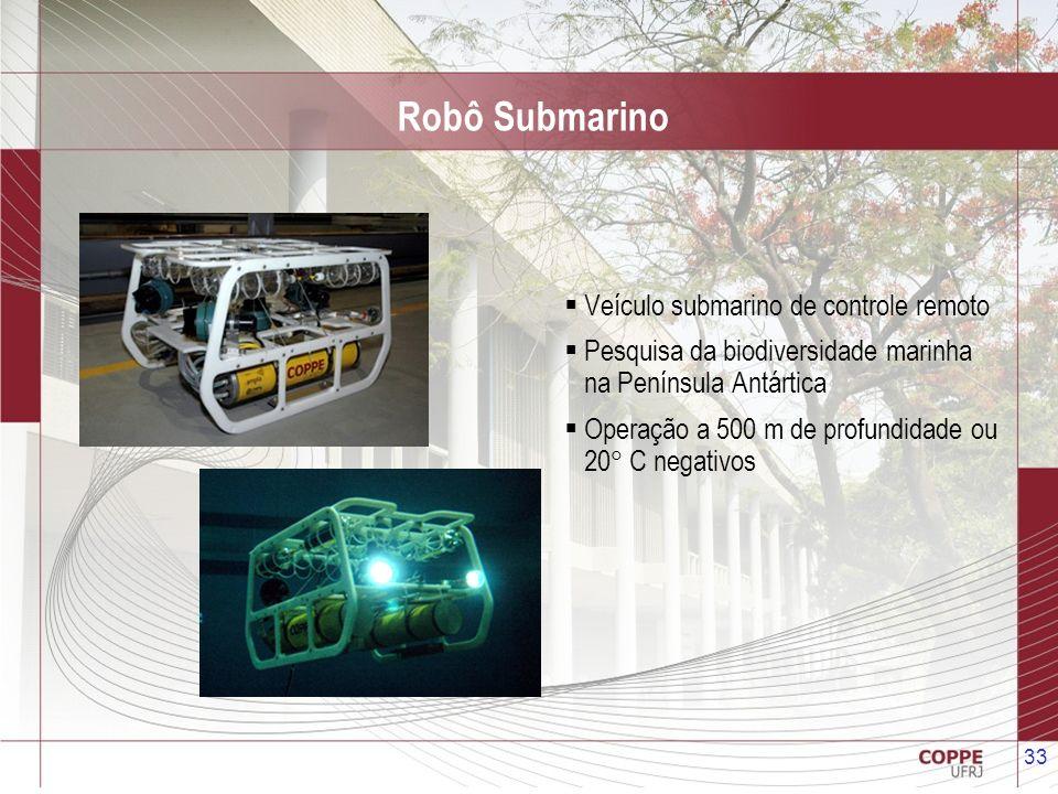 33 Robô Submarino Veículo submarino de controle remoto Pesquisa da biodiversidade marinha na Península Antártica Operação a 500 m de profundidade ou 2