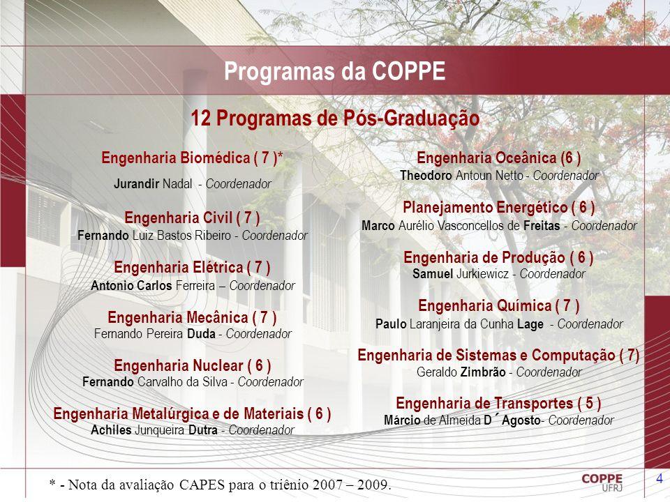 5 Programas da COPPE Para 2014 a COPPE está criando um novo: Programa de Engenharia da Nanotecnologia Sergio Alvaro de Souza Camargo Junior - Coordenador
