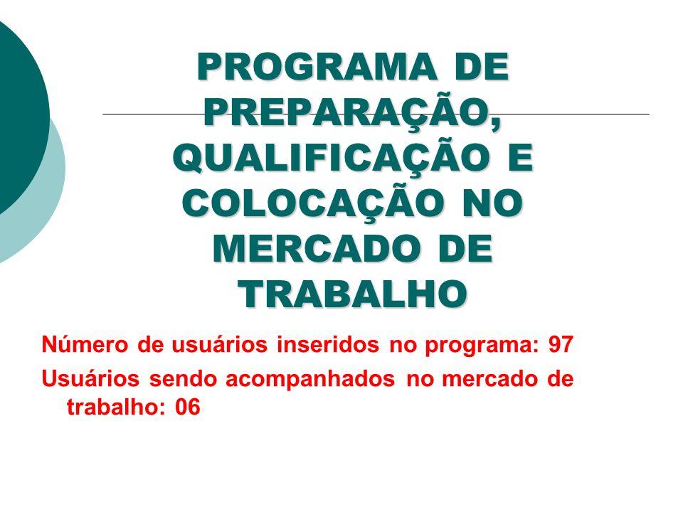 PROGRAMA DE PREPARAÇÃO, QUALIFICAÇÃO E COLOCAÇÃO NO MERCADO DE TRABALHO Número de usuários inseridos no programa: 97 Usuários sendo acompanhados no mercado de trabalho: 06