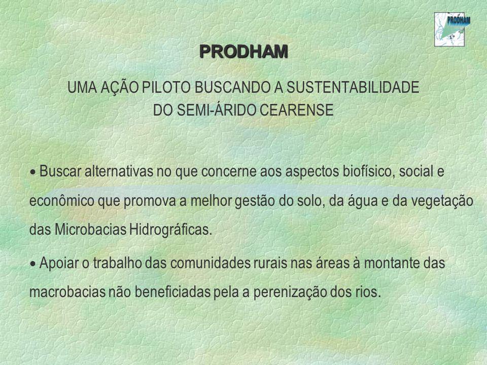 PRODHAM UMA AÇÃO PILOTO BUSCANDO A SUSTENTABILIDADE DO SEMI-ÁRIDO CEARENSE Buscar alternativas no que concerne aos aspectos biofísico, social e econômico que promova a melhor gestão do solo, da água e da vegetação das Microbacias Hidrográficas.