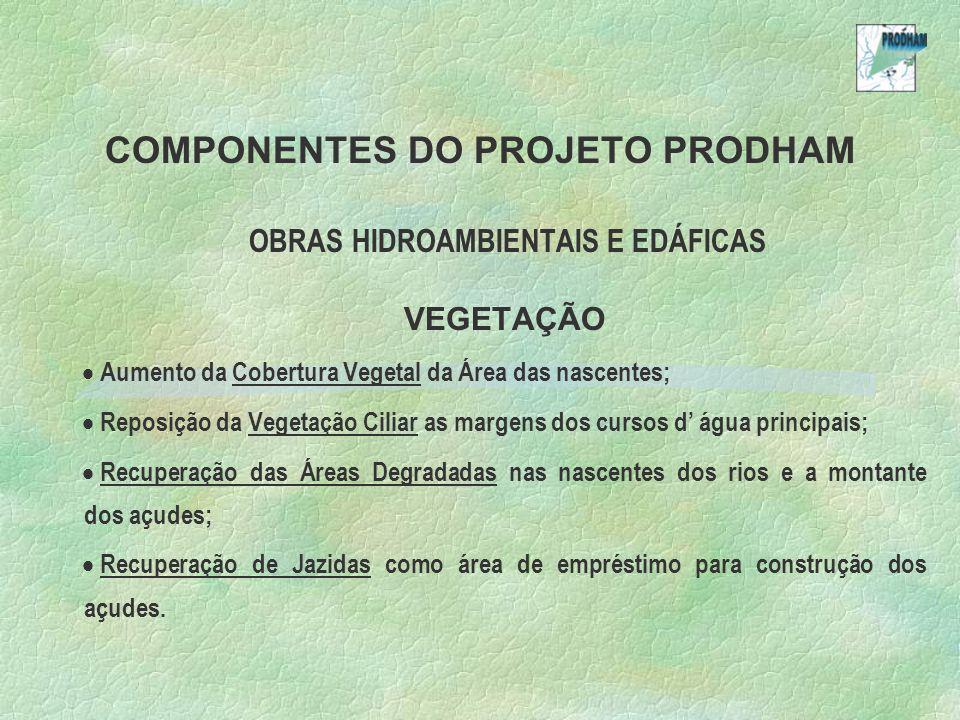 COMPONENTES DO PROJETO PRODHAM OBRAS HIDROAMBIENTAIS E EDÁFICAS VEGETAÇÃO Aumento da Cobertura Vegetal da Área das nascentes; Reposição da Vegetação C
