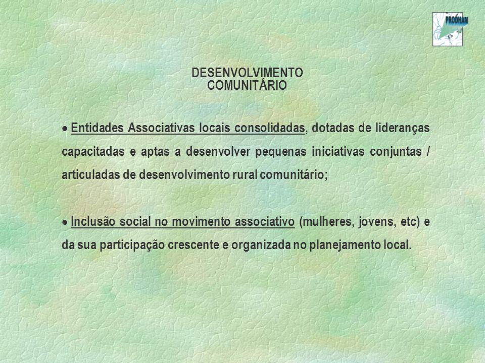 DESENVOLVIMENTO COMUNITÁRIO Entidades Associativas locais consolidadas, dotadas de lideranças capacitadas e aptas a desenvolver pequenas iniciativas conjuntas / articuladas de desenvolvimento rural comunitário; Inclusão social no movimento associativo (mulheres, jovens, etc) e da sua participação crescente e organizada no planejamento local.