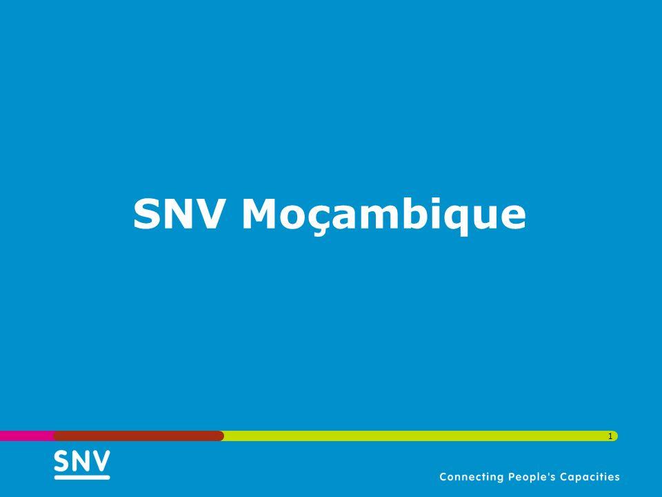 1 SNV Moçambique