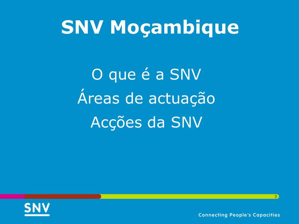 3 O que é a SNV Áreas de actuação Acções da SNV SNV Moçambique