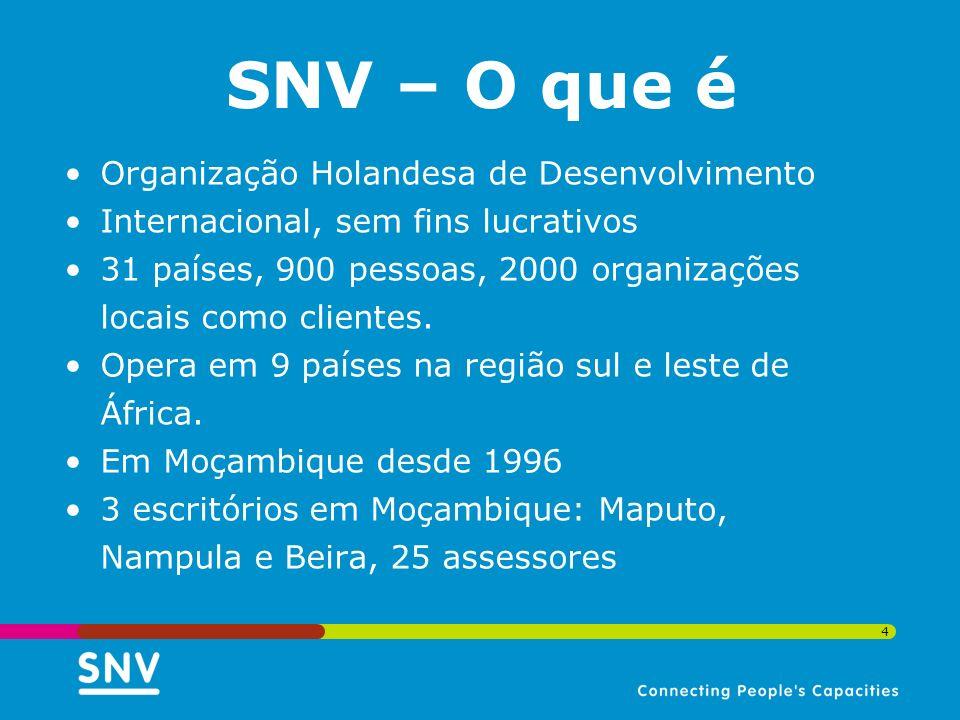 4 Organização Holandesa de Desenvolvimento Internacional, sem fins lucrativos 31 países, 900 pessoas, 2000 organizações locais como clientes. Opera em