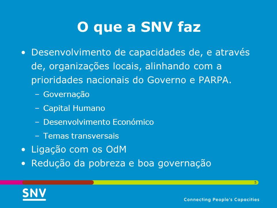 5 Desenvolvimento de capacidades de, e através de, organizações locais, alinhando com a prioridades nacionais do Governo e PARPA. –Governação –Capital