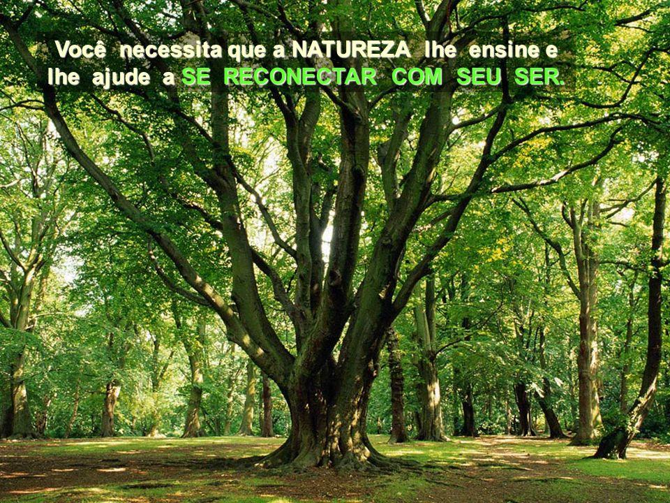 Conecte-se com a Natureza do modo mais íntimo e INTERNO, percebendo a sua própria respiração e aprendendo a manter a sua ATENÇÃO NELA. e INTERNO, perc