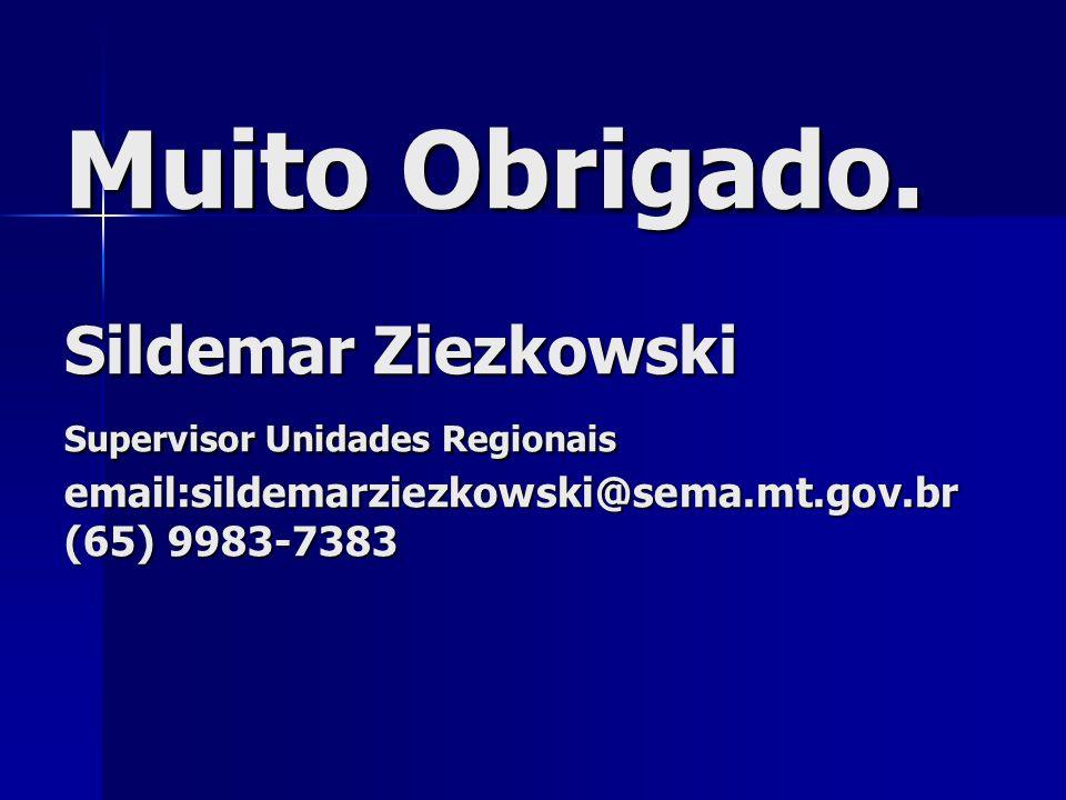 Muito Obrigado. Sildemar Ziezkowski Supervisor Unidades Regionais email:sildemarziezkowski@sema.mt.gov.br (65) 9983-7383