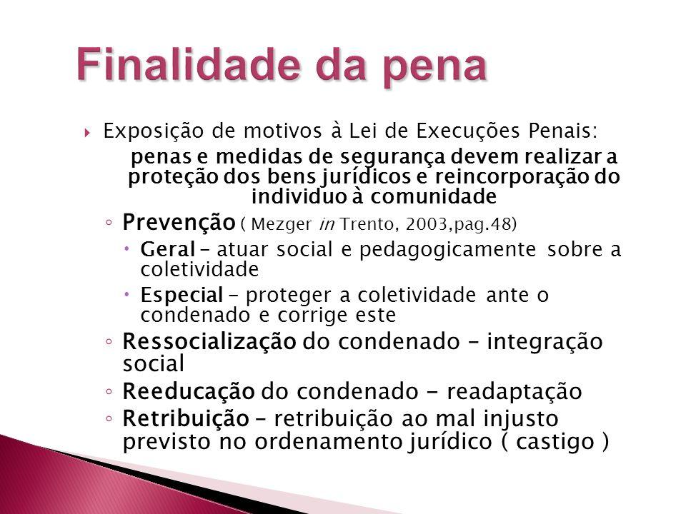 Exposição de motivos à Lei de Execuções Penais: penas e medidas de segurança devem realizar a proteção dos bens jurídicos e reincorporação do individu