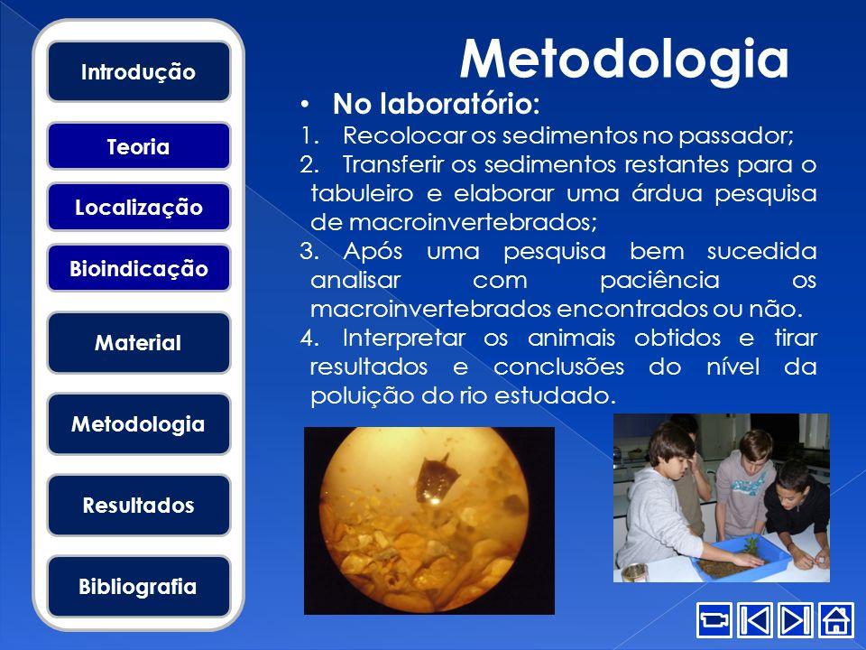 Metodologia No laboratório: 1.Recolocar os sedimentos no passador; 2.Transferir os sedimentos restantes para o tabuleiro e elaborar uma árdua pesquisa