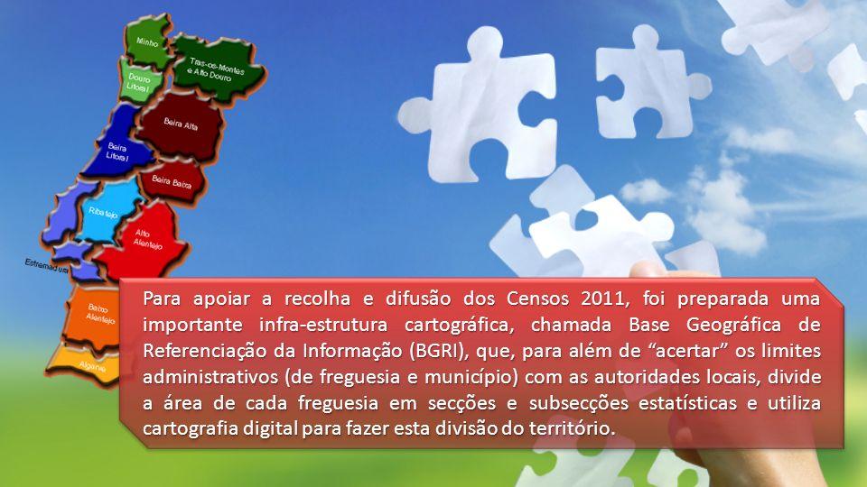 Para apoiar a recolha e difusão dos Censos 2011, foi preparada uma importante infra-estrutura cartográfica, chamada Base Geográfica de Referenciação d