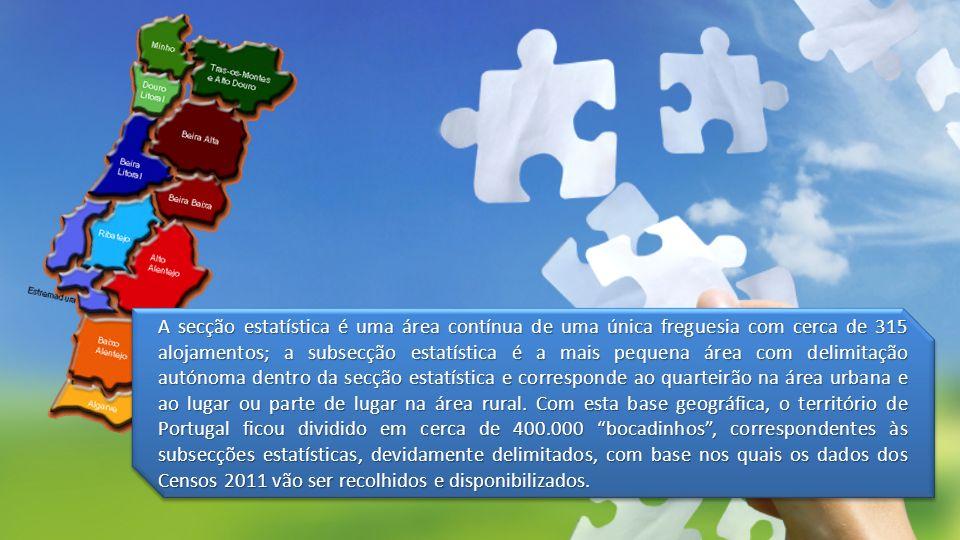 A secção estatística é uma área contínua de uma única freguesia com cerca de 315 alojamentos; a subsecção estatística é a mais pequena área com delimi
