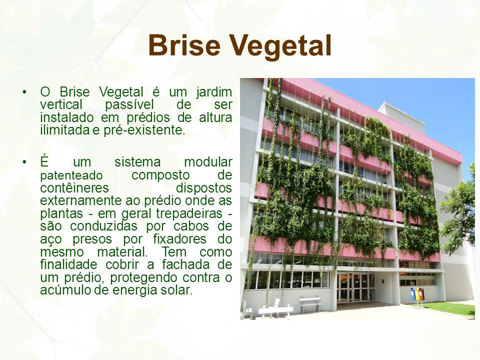 Brise Vegetal O Brise Vegetal é um jardim vertical passível de ser instalado em prédios de altura ilimitada e pré-existente. É um sistema modular pate