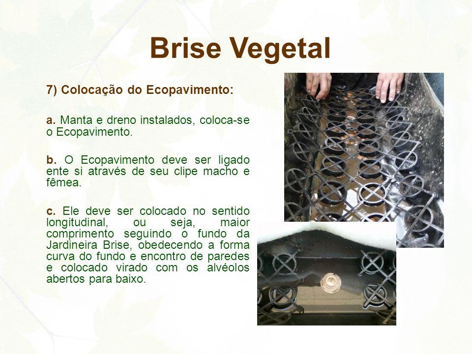 7) Colocação do Ecopavimento: a. Manta e dreno instalados, coloca-se o Ecopavimento. b. O Ecopavimento deve ser ligado ente si através de seu clipe ma