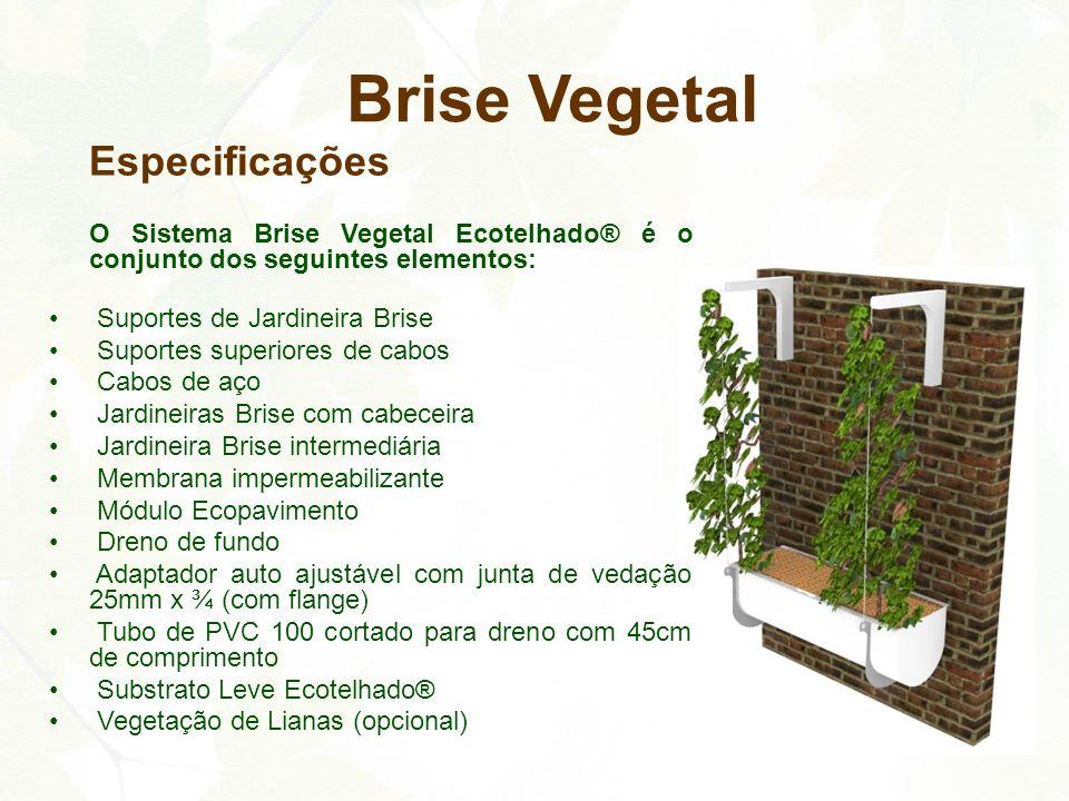 Especificações O Sistema Brise Vegetal Ecotelhado® é o conjunto dos seguintes elementos: Suportes de Jardineira Brise Suportes superiores de cabos Cab