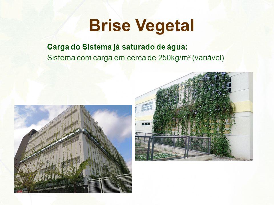 Carga do Sistema já saturado de água: Sistema com carga em cerca de 250kg/m² (variável) Brise Vegetal