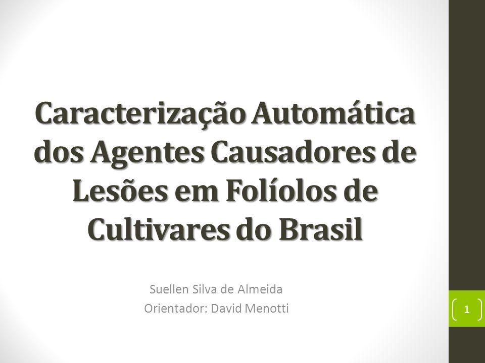 Caracterização Automática dos Agentes Causadores de Lesões em Folíolos de Cultivares do Brasil Suellen Silva de Almeida Orientador: David Menotti 1