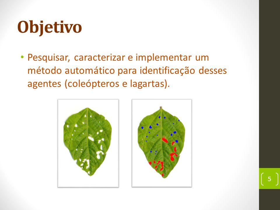Objetivo Pesquisar, caracterizar e implementar um método automático para identificação desses agentes (coleópteros e lagartas).