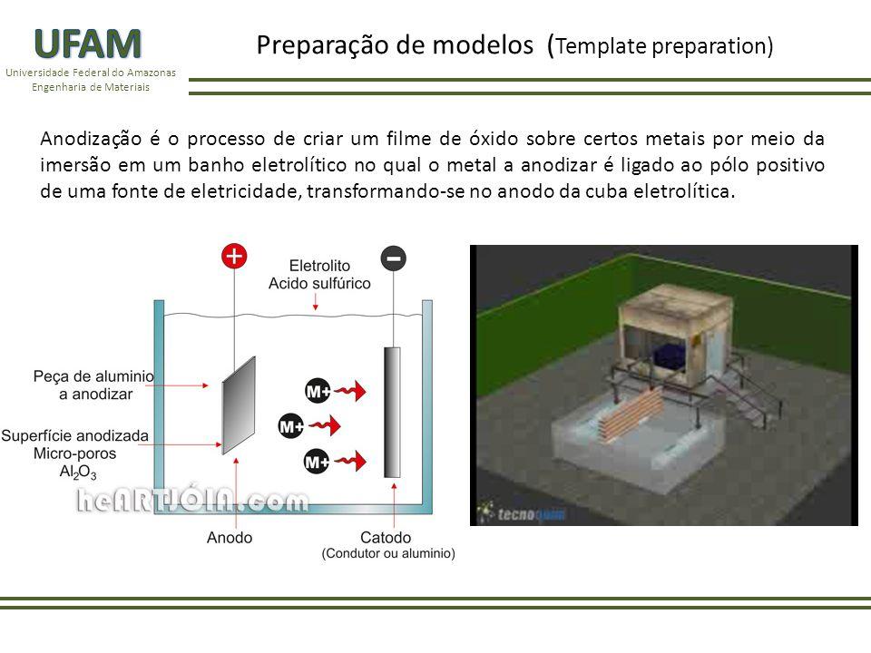 Universidade Federal do Amazonas Engenharia de Materiais Os modelos de alumina porosa de ordenadas hexagonais foram preparados através de 2 etapas do processo de anodização.